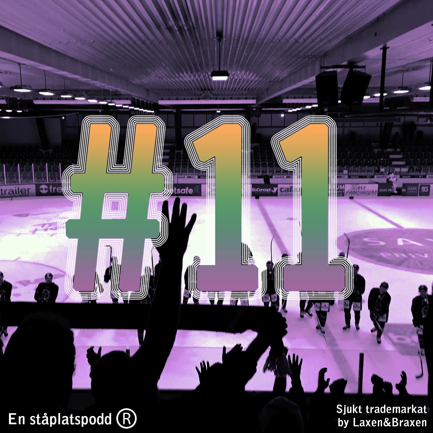 """Så slutar """"Slutspelsserien"""" och """"så bra"""" tippade vi """"HockeyAllsvenskan"""" 17/18"""